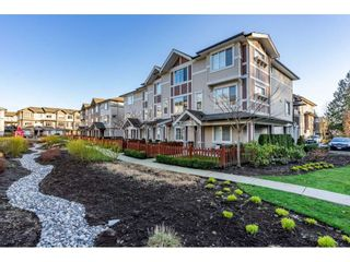 """Photo 1: 47 10151 240 Street in Maple Ridge: Albion Townhouse for sale in """"ALBION STATION"""" : MLS®# R2437036"""