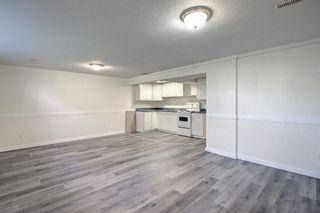 Photo 39: 3036 Doverville Crescent SE in Calgary: Dover Semi Detached for sale : MLS®# A1148570