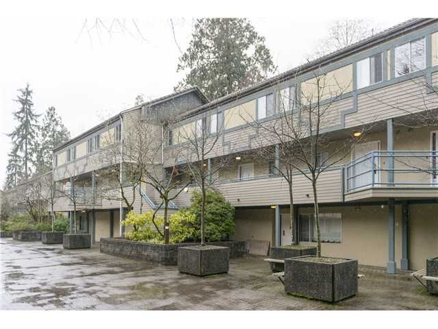 """Main Photo: 18 2978 WALTON Avenue in Coquitlam: Canyon Springs Townhouse for sale in """"CREEK TERRACE"""" : MLS®# V1049837"""