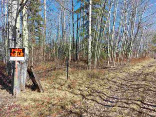 Photo 4: LOT 19 NESS LAKE Road in Prince George: Ness Lake Land for sale (PG Rural North (Zone 76))  : MLS®# R2572222
