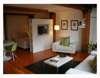 """Photo 1: 306 528 BEATTY Street in Vancouver: Downtown VW Condo for sale in """"THE BOWMAN BLOCK"""" (Vancouver West)  : MLS®# V676620"""