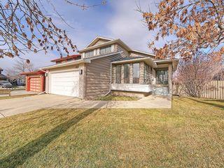 Photo 41: 99 BERNARD Court NW in Calgary: Beddington Heights Detached for sale : MLS®# C4215187
