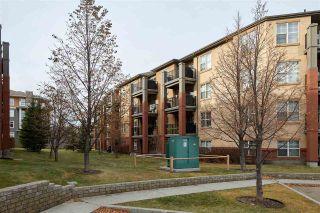 Photo 3: 417 11445 ELLERSLIE Road in Edmonton: Zone 55 Condo for sale : MLS®# E4228991
