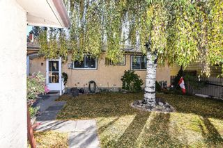 Photo 13: 315 Rundlehill Drive NE in Calgary: Rundle Detached for sale : MLS®# A1153434