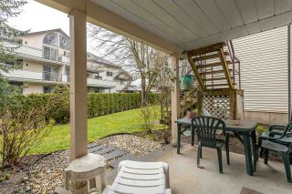 """Photo 17: 43 6467 197 Street in Langley: Willoughby Heights Townhouse for sale in """"Willow Estates"""" : MLS®# R2441134"""