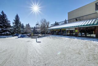 Photo 36: 502 145 Point Drive NW in Calgary: Point McKay Apartment for sale : MLS®# A1070132