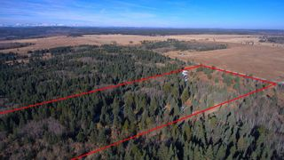 Photo 9: 20.02 Acres +/- NW of Cochrane in Rural Rocky View County: Rural Rocky View MD Land for sale : MLS®# A1065950
