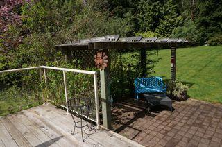 Photo 22: 26177 126th St. in Maple Ridge: Whispering Hills House for sale : MLS®# V1113864