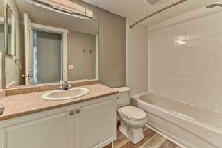 Photo 17: 337 1717 60 Street SE in Calgary: Red Carpet Apartment for sale : MLS®# A1067174
