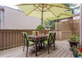"""Photo 25: 49 13809 102 Avenue in Surrey: Whalley Townhouse for sale in """"The Meadows"""" (North Surrey)  : MLS®# F1447952"""