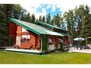 Photo 29: 2 Doyle Drive: Sundre House for sale : MLS®# C4022571