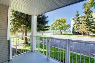Photo 20: 108 2108 Valleyview Park SE in Calgary: Dover Apartment for sale : MLS®# A1145848