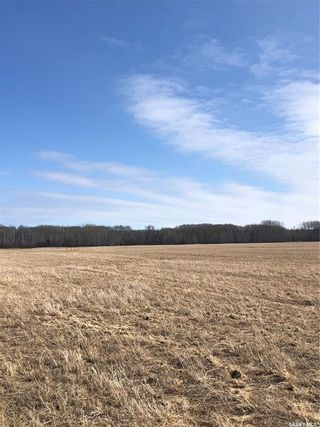 Photo 6: New land in Hudson Bay: Farm for sale (Hudson Bay Rm No. 394)  : MLS®# SK846735