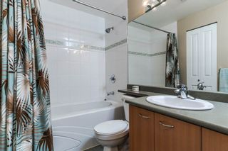 Photo 15: A432 2099 Lougheed Hwy in Port Coquitlam: Condo for sale : MLS®# R2027045