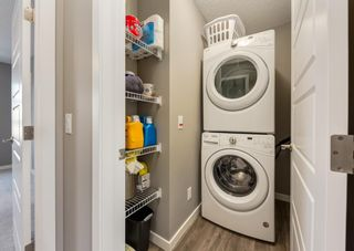 Photo 26: 99 Masters Manor SE in Calgary: Mahogany Detached for sale : MLS®# A1130328
