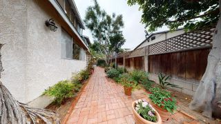 Photo 26: POINT LOMA House for sale : 4 bedrooms : 3284 Talbot St in San Diego
