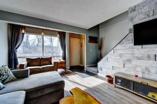 Photo 7: 1 6144 Bowness Road NW in Calgary: Bowness Row/Townhouse for sale : MLS®# A1077373