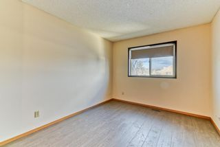 Photo 12: 4 Harvest Gold Heights NE in Calgary: Harvest Hills Detached for sale : MLS®# A1072848