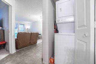 Photo 14: 3136 6818 Pinecliff Grove NE in Calgary: Pineridge Apartment for sale : MLS®# A1132445
