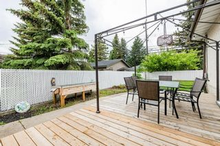 Photo 45: 11208 36 Avenue in Edmonton: Zone 16 House for sale : MLS®# E4249289