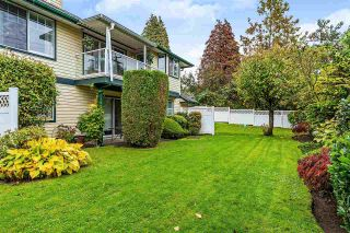 """Photo 19: 8 22538 116 Avenue in Maple Ridge: East Central Townhouse for sale in """"POOLSIDE VILLAS"""" : MLS®# R2413715"""