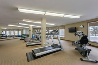 Photo 23: 210 30 Cranfield Link SE in Calgary: Cranston Apartment for sale : MLS®# A1070786