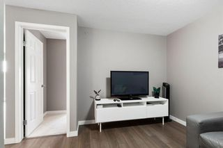 Photo 13: 8403 304 Mackenzie Way: Airdrie Apartment for sale : MLS®# A1146361