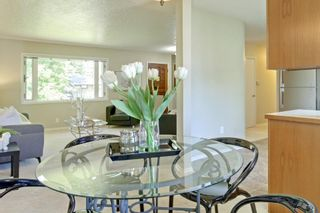 Photo 7: 108 Langton Drive SW in Calgary: North Glenmore Park Detached for sale : MLS®# A1009701