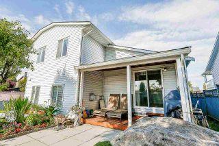 Photo 18: 9623 130 Street in Surrey: Cedar Hills House for sale (North Surrey)  : MLS®# R2176766
