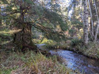 Photo 20: LT 189 Ellenor Rd in : CV Comox Peninsula Land for sale (Comox Valley)  : MLS®# 858998