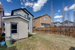 Photo 23: 13 Auburn Bay View SE in Calgary: Auburn Bay Detached for sale : MLS®# A1099735