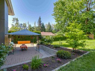 """Photo 26: 3585 BRIGHTON Drive in Burnaby: Government Road House for sale in """"GOVERNMENT ROAD AREA"""" (Burnaby North)  : MLS®# R2069615"""