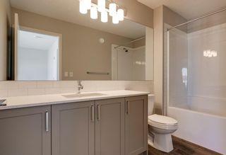 Photo 27: 286 Cornerstone Crescent NE in Calgary: Cornerstone Detached for sale : MLS®# A1075287