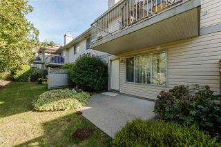 """Photo 17: 25 2023 WINFIELD Drive in Abbotsford: Abbotsford East Townhouse for sale in """"Meadow View"""" : MLS®# R2106791"""