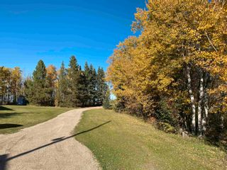 Photo 7: 450080 HWY 795: Rural Wetaskiwin County House for sale : MLS®# E4264794
