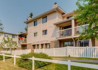 Main Photo: 107 3015 51 Street SW in Calgary: Glenbrook Row/Townhouse for sale : MLS®# A1134854