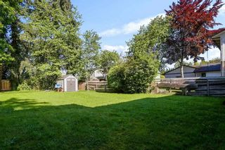 """Photo 7: 10051 NO. 4 Road in Richmond: South Arm House for sale in """"South Arm"""" : MLS®# R2583431"""