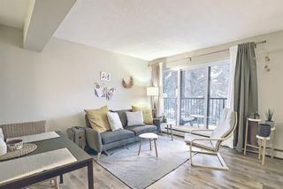 Photo 1: 202 1717 12 Street SW in Calgary: Lower Mount Royal Apartment for sale : MLS®# A1079434