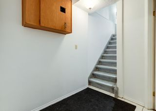 Photo 11: 3135 Rae Crescent SE in Calgary: Albert Park/Radisson Heights Detached for sale : MLS®# A1139656