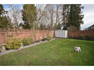 """Photo 20: 1450 RHINE Crescent in Port Coquitlam: Riverwood House for sale in """"RIVERWOOD"""" : MLS®# V1052007"""