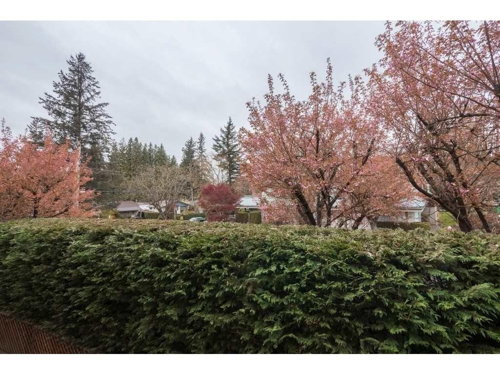 "Photo 20: Photos: 309 2684 MCCALLUM Road in Abbotsford: Central Abbotsford Condo for sale in ""Ridgeview"" : MLS®# R2358265"