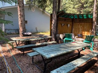 Photo 17: 32375 Range Road 62 Road: Rural Mountain View County Detached for sale : MLS®# A1139320