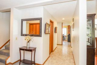 Photo 14: 1244 Berkley Drive NW in Calgary: Beddington Heights Detached for sale : MLS®# A1118414