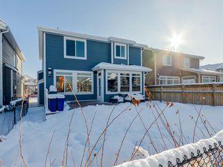 Photo 40: 117 Auburn Shores Way SE in Calgary: Auburn Bay Detached for sale : MLS®# A1066461