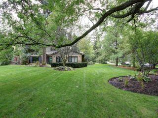 Photo 23: 9 Pheasant Lane in Toronto: Princess-Rosethorn Freehold for sale (Toronto W08)  : MLS®# W3627737