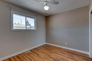 Photo 14: 302 Whitney Crescent SE in Calgary: Willow Park Detached for sale : MLS®# A1146432
