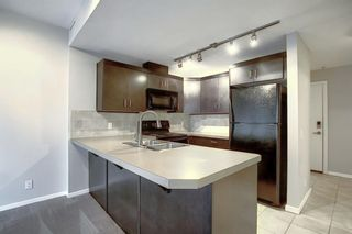 Photo 4: 1002 1410 1 Street SE in Calgary: Beltline Apartment for sale : MLS®# A1059514
