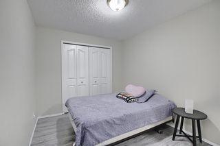 Photo 28: 87 Taravista Street NE in Calgary: Taradale Detached for sale : MLS®# A1084185