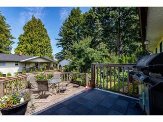 Photo 31: 33505 KIRK Avenue in Abbotsford: Poplar House for sale : MLS®# R2486537