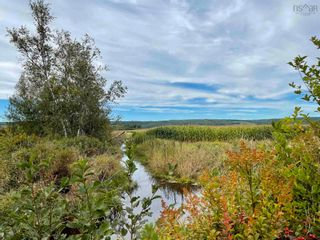 Photo 9: Lot Brooklyn Street in North Kingston: 404-Kings County Vacant Land for sale (Annapolis Valley)  : MLS®# 202123863